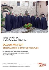 Plakat Hildesheim 2015